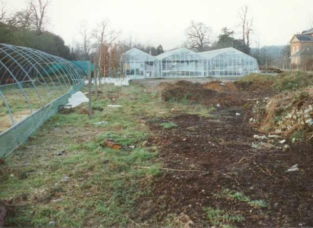 greenhouse and polytunnel under construction